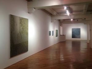 Molecular Portraits, Katzman Kamen Gallery, Toronto ON 2013