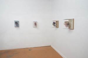 "<span class=""artworktitle"">Four pieces from the Rosh series</span><span class=""artworkcaption""><br/>studio installation, 2017</span>"